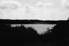 LakeTokorozawa_6